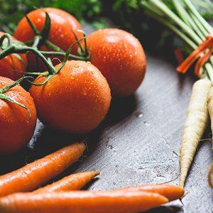 Zöldség gyümölcs feldolgozó okj tanfolyam